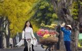Những con đường tuyệt đẹp như bài hát 'Nhớ mùa thu Hà Nội'