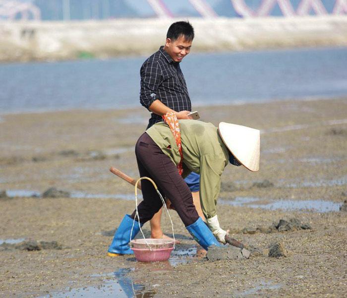 Sá sùng được người dân vùng biển bắt thủ công trên những bãi cát dài